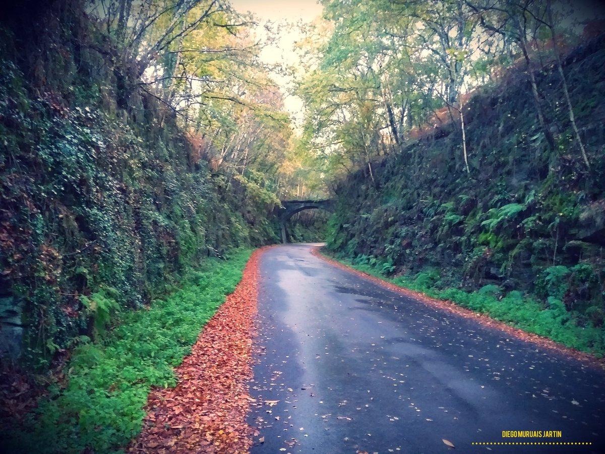 Outeiro de Rei... #lugo #galicia #outeiroderei #total_lugo #sitiosdeEspaña #Vision_Spain #VisitSpain #Vision_Galicia #world_great #Ok_Spain #descobregalicia #total_galicia #SienteGalicia #lugaressecretosdegalicia #visitgalicia #galiciaenfotos #galiciaviva #paseandoporgaliciapic.twitter.com/y615EfKj05