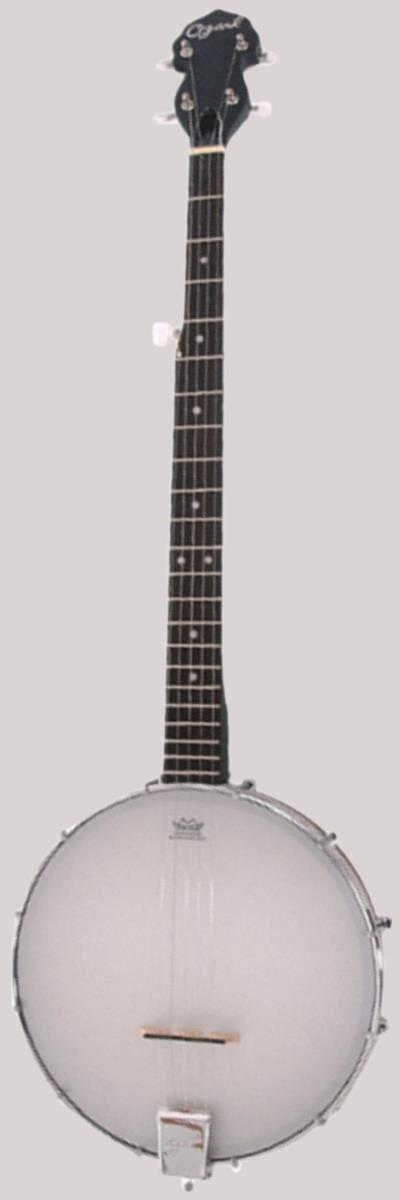 Ozark 2102G open backed Banjo