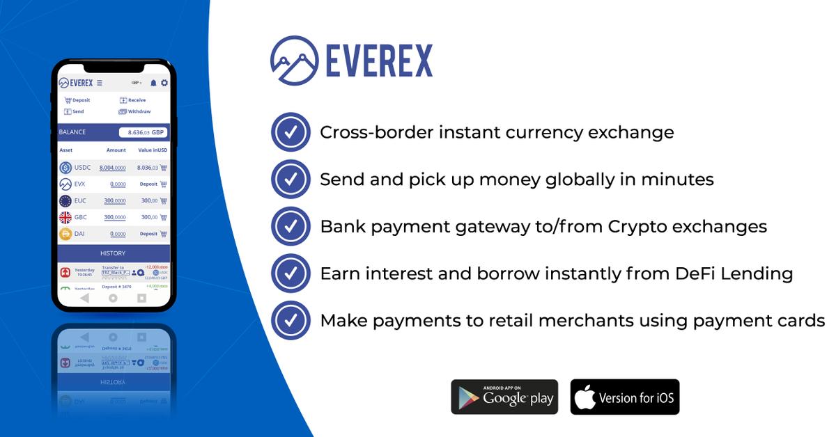 Everex description