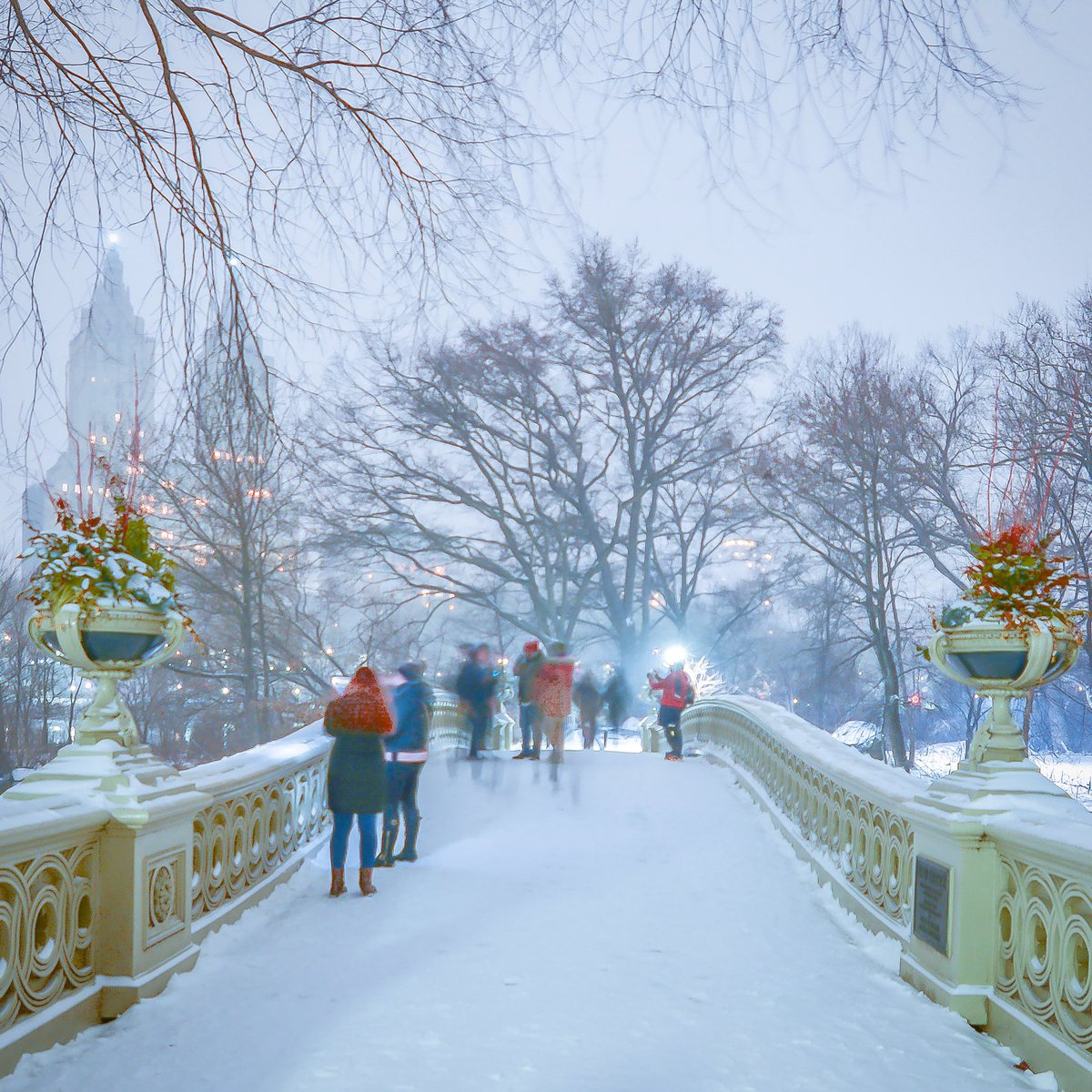 #tbt Throwback to snowy Bow Bridge. Image made on January 18, 2020 in Central Park