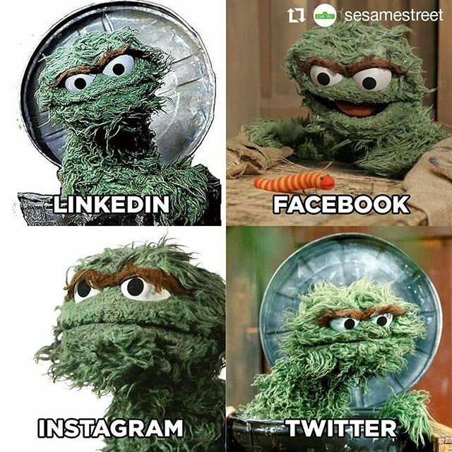 #Repost @sesamestreet• • • • • •When Sesame Street friends become LinkedIn profile pic goals 🔥•••#sesamestreet #oscar #oscarthegrouch..#セサミストリート#SesameStreet#セサミストリート50周年#SesameStreet50#sesamestreet50thanniversary#Sesame50