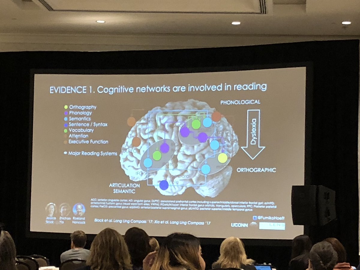 Cognitive networks are involved in reading. @FumikoHoeft #PlainTalkNOLA
