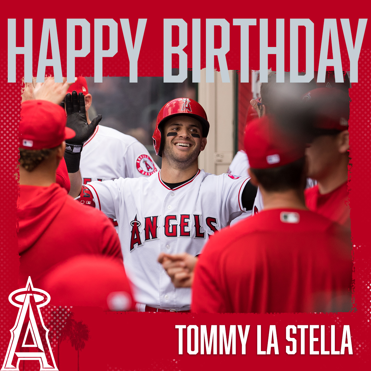 SAY NICE THINGS ABOUT TOMMY LA STELLA. <br>http://pic.twitter.com/Hq5UaPVVD0