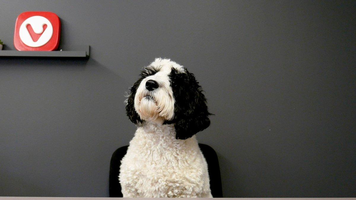 Very good boy in the studio today 🐶 https://t.co/2IQvJHhEMc