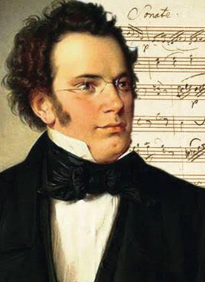 Шуберт картинки композитора