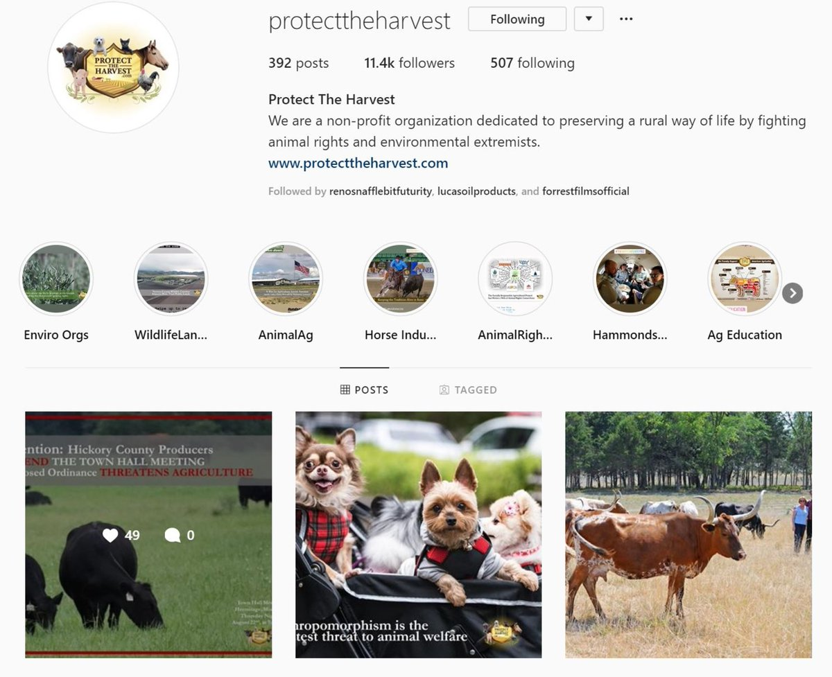 Be sure to join us on #Instagram! We can be found at @protecttheharvest.  #followusoninsta #protecttheharvest #agriculture #animalag #morals #livestock #hunting #farming #petownership #adoptorshop #forrestlucas https://t.co/zExfosftE4