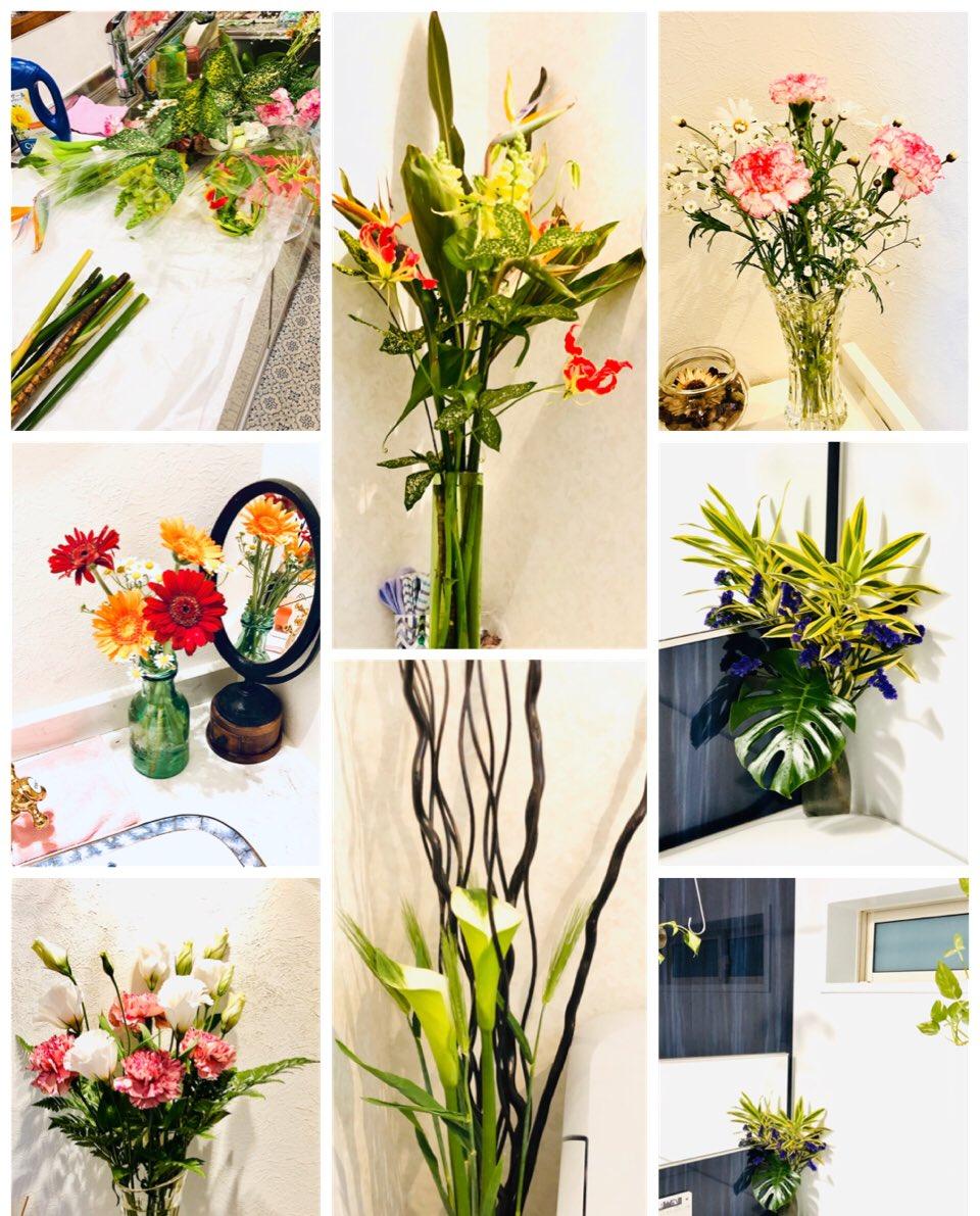 今週末に購入したお花💐 部屋🚪や浴室🛁、トイレ🚽など、 各所へ飾りました。🌸🌼🌸🌼🌿 ・ ・ ・ #グロリオサ #金魚草 #カラー #レザーファン #ヒナギク #かすみ草 #トルコキキョウ #カーネーション #極楽鳥花 #ドラセナ #ゴットセフィアナ #麦 #ガーベラ