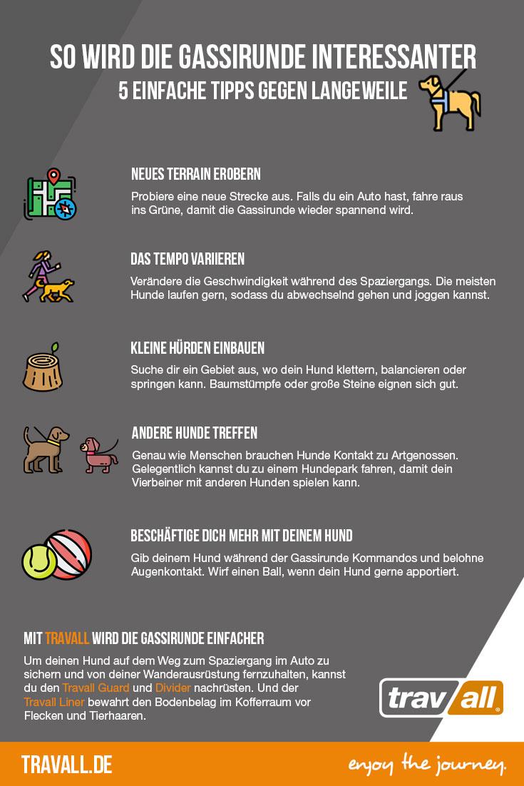 Hat sich in letzter Zeit ein bisschen zu viel Routine in die #Gassirunde eingeschlichen? Dann haben wir ein paar gute #Tipps für euch! http://www.travall.de #Hund #gassigehen #Hundeliebe #Pfotenliebe #Infografik #Wochenendepic.twitter.com/d7abkLeu1h