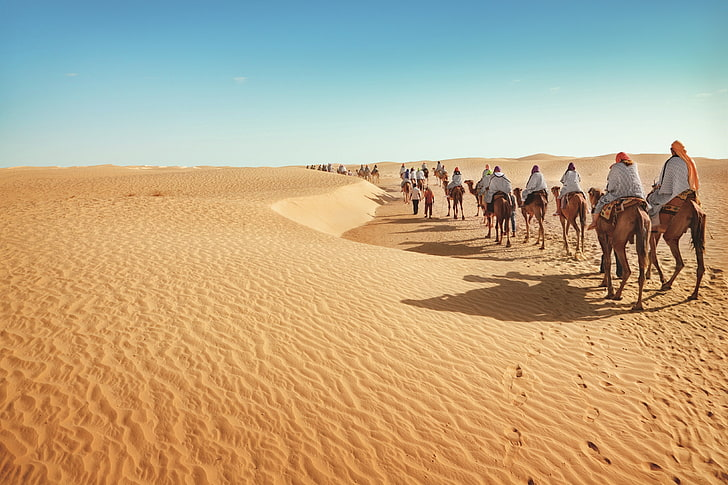 Book your trip :   <3 - WELCOME #travellovers #tourist #tourism #travelphotography #traveling #travellove #travelgram #instagood #instagram #aroundtheworld #moroccotour #tour #touristic #beach #desert #luxhotels #marrakech #paris #madrid #saopaulo #oments