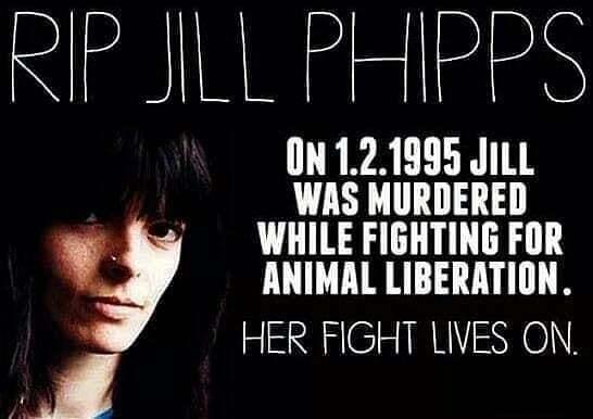 RIP Jilly Phipps #animalrights #animalsrightsactivist #banliveexport ift.tt/391Sg8O