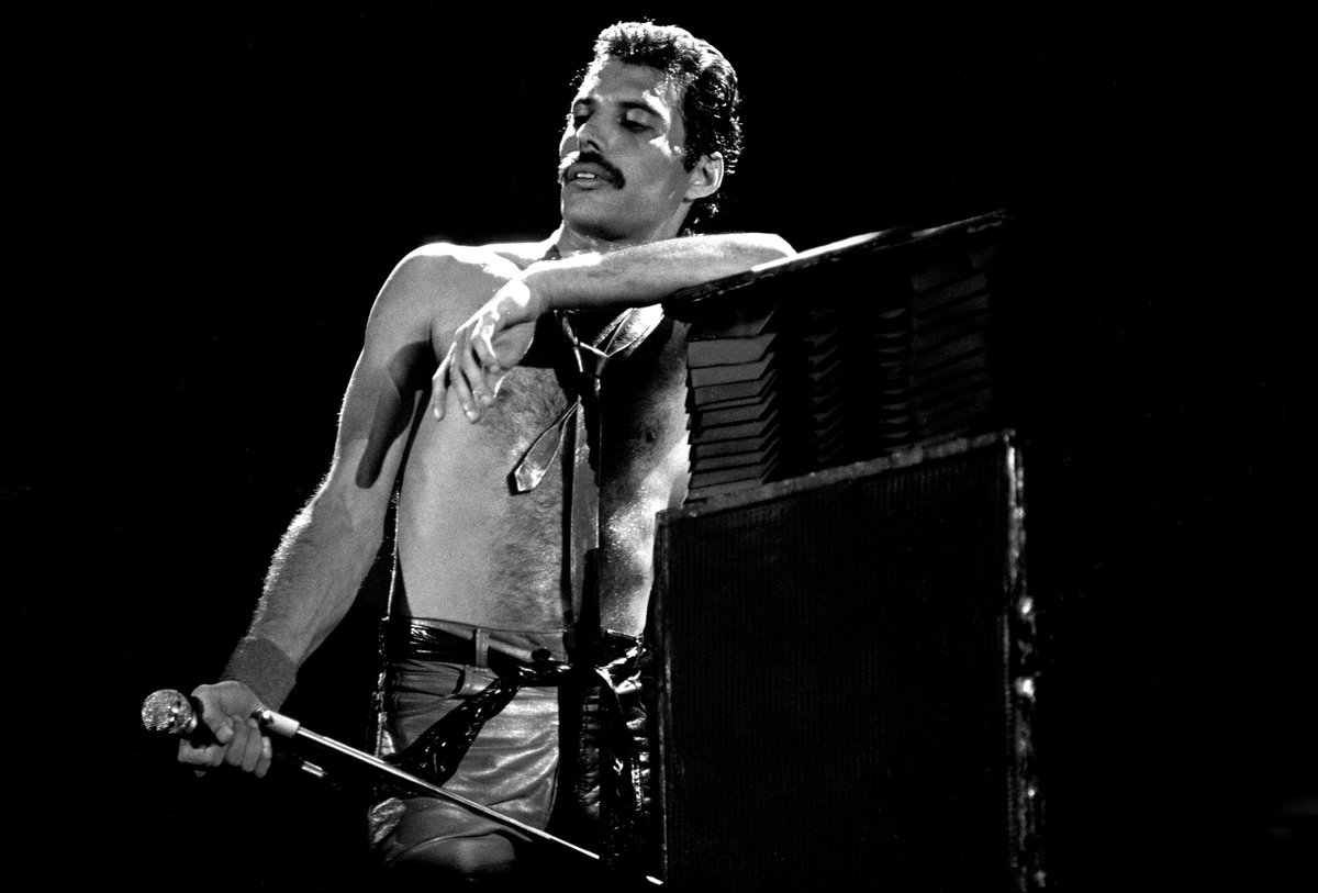 'People are apprehensive when they meet me. They think I'm going to eat them.' - Freddie Mercury 💛