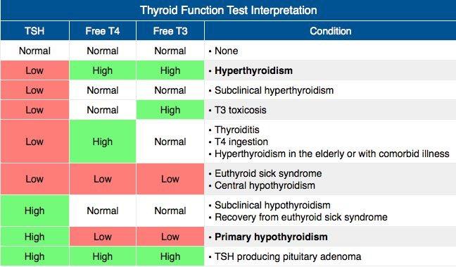 Thyroid Function Test كيف اقي م نشاط الغده الدرقيه واعرف اذا هي