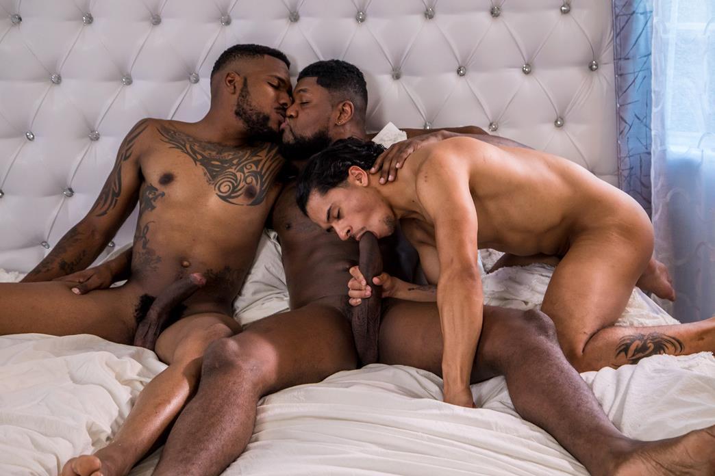 Free Interracial Gay Galery Pics
