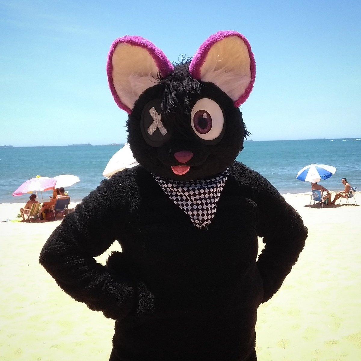 #furry #fursuit #furryfandom #fursuiter #fluffy #cute #kawaii #cosplay #praia #beach #fursuitbeach #praiadacosta #kyoki #cat #gato #nekopic.twitter.com/tOSxFq1ktH
