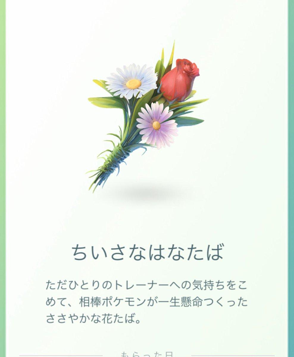 花屋の坊主さんの投稿画像