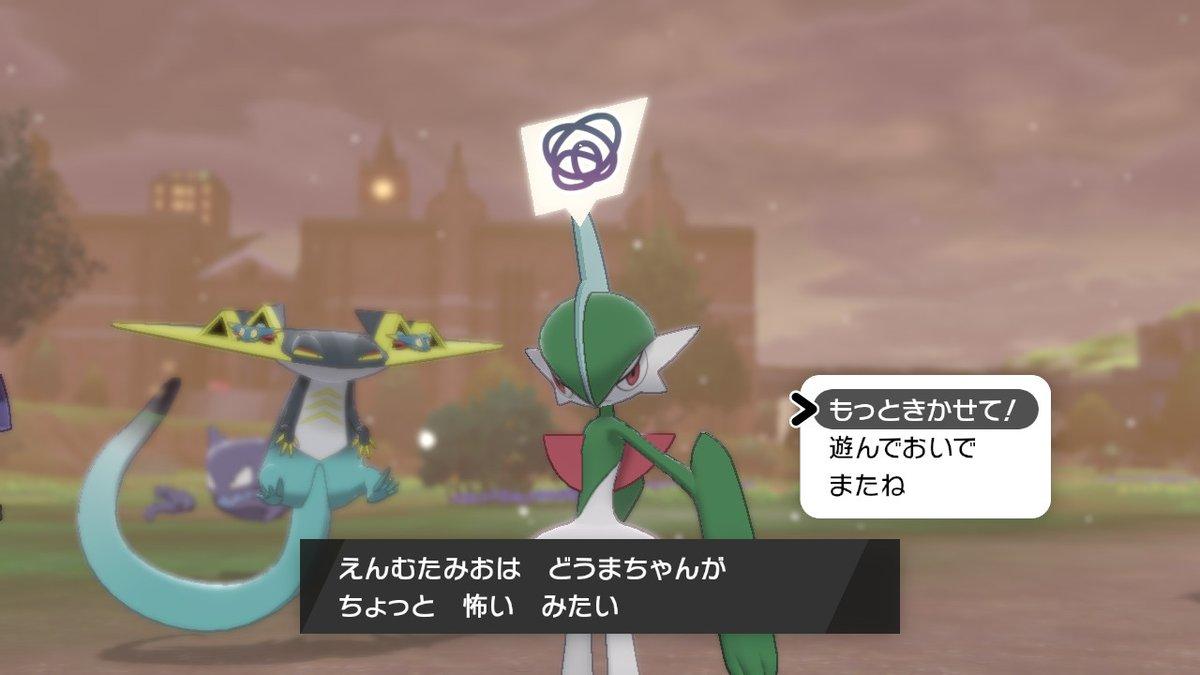 剣盾 捕獲要因 ポケモン