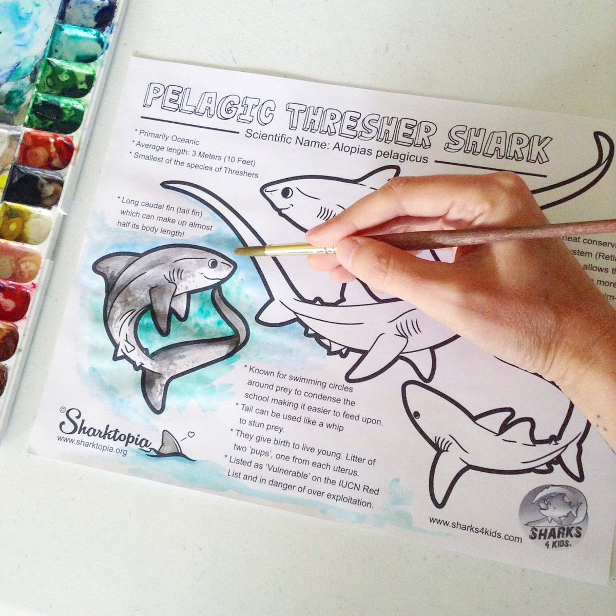 Create Your Own Coloring Book: 9 Fun Coloring Pages! | Parents | 1200x1200
