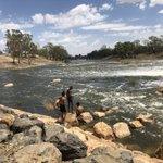 Image for the Tweet beginning: Goosebumps! The Barwon River at