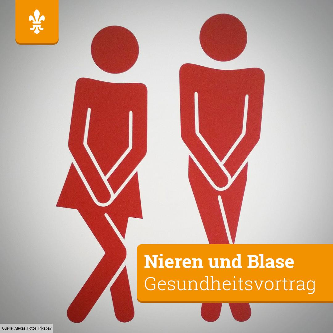Wollt ihr wissen, wie eure #Nieren gesund bleiben? Oder was ihr gegen #Beckenbodenschwäche tun könnt? Antworten auf diese Fragen gibt es Mittwoch ab 17.30 Uhr im Rathaus in der Vortragsreihe #VerständlicheMedizin.  http://bit.ly/39DECJ6 #wiesbaden #gesundheitpic.twitter.com/04RycYyL5B
