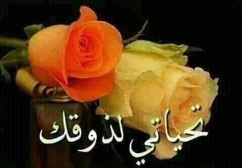 ربي يسعدك ويبارك في حضرتك د. عبد الفتاح يا صاحب القلب الطيب والحضور الراقي كل الشكر لحضرتك 🙏🙏