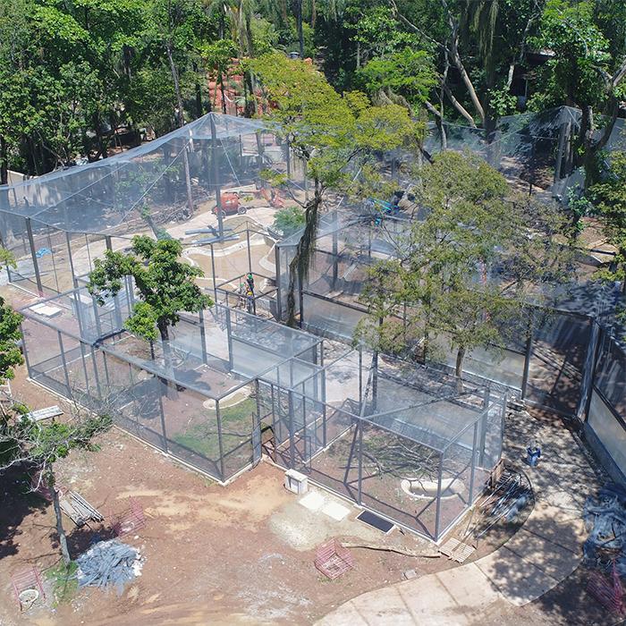Zoológico do Rio de Janeiro se transforma em bioparque sem jaulas #Animais #animaisemextinção #bioparque #boasações #boasiniciativas #BoasNotícias #bonsexemplos #notíciaboa #preservaçãodasespécies #RiodeJaneiro #SalvadePalmas #zoológico https://www.salvadepalmas.com.br/zoologico-do-rio-de-janeiro-se-transforma-em-bioparque-sem-jaulas/…pic.twitter.com/QzRqourdUK