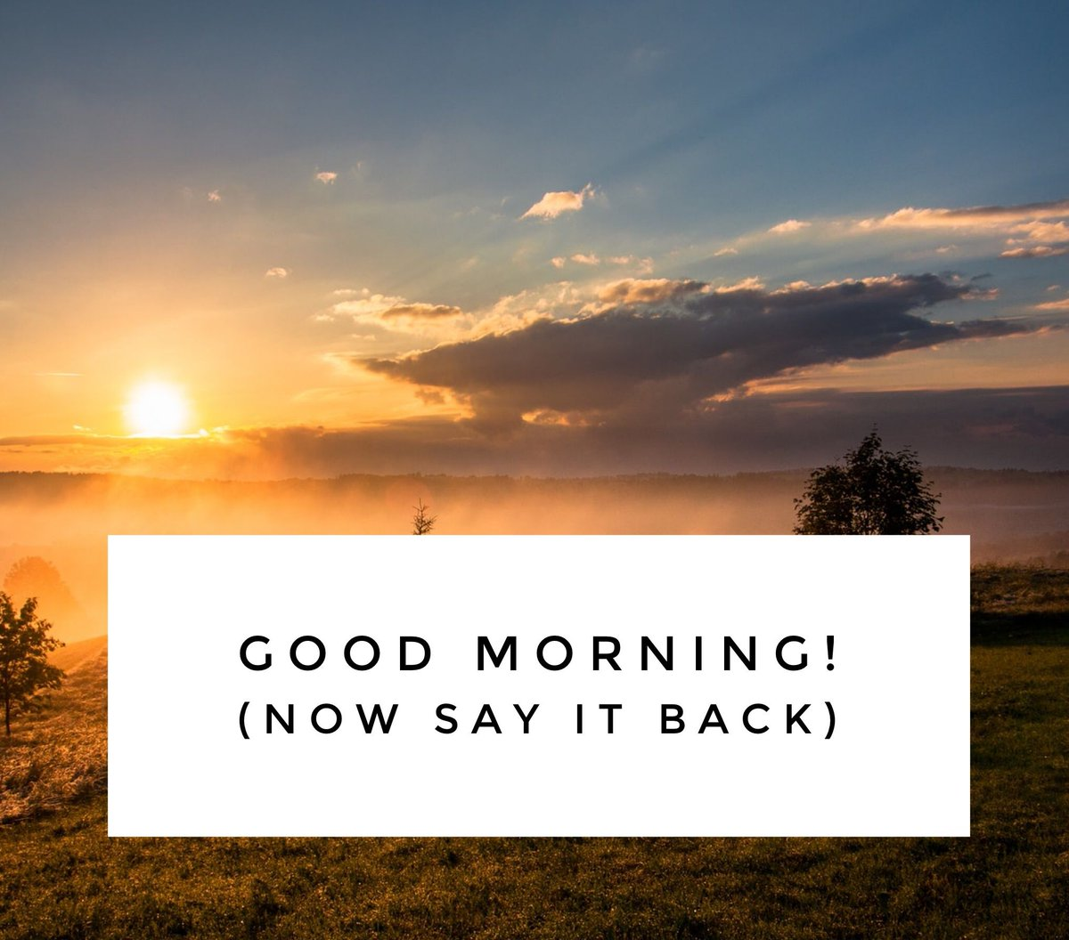 Gimme my good morning...don't leave a girl hanging #positivity #affirmations #blackdollarsmatter #blackmarketplace #homebusinesstips #simplyclassy #positivethinking #mondaymotivation #selfcare #wealthmindset #startupswag #startupcourse #taxplanning #payroll #creditrepairpic.twitter.com/SY4naQBT4Y