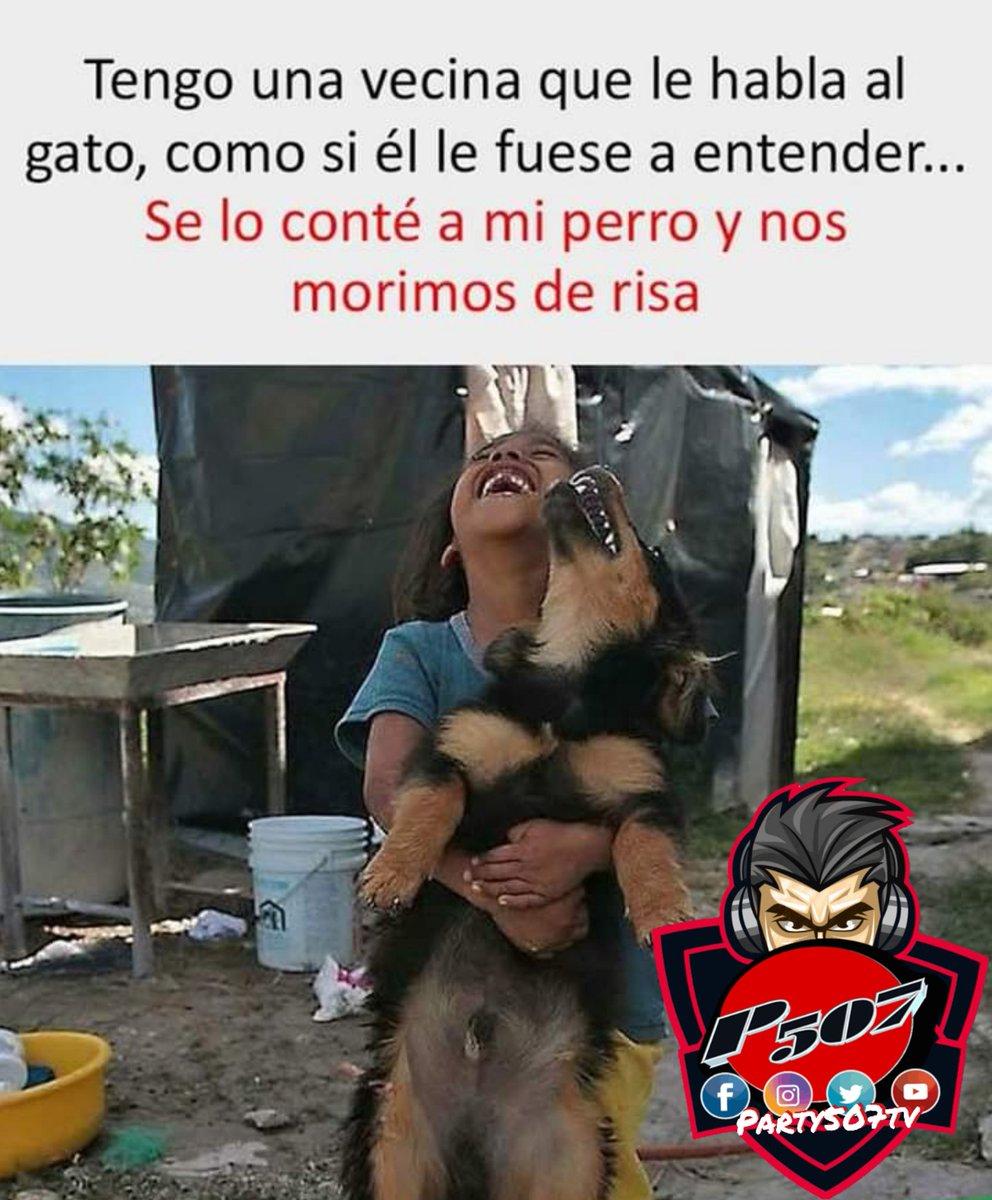 #risa #risas #videosderisas #videosgraciosos #videoviral #risasaseguradas #risascontagiosas #risasymasrisas #graciosopic.twitter.com/en5BCtK7Q8