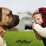 Image for the Tweet beginning: Going live on #ThePetBuzz #RadioShow