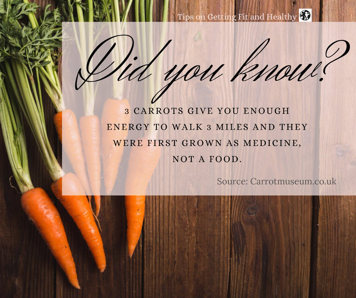 Food Facts! 🥕