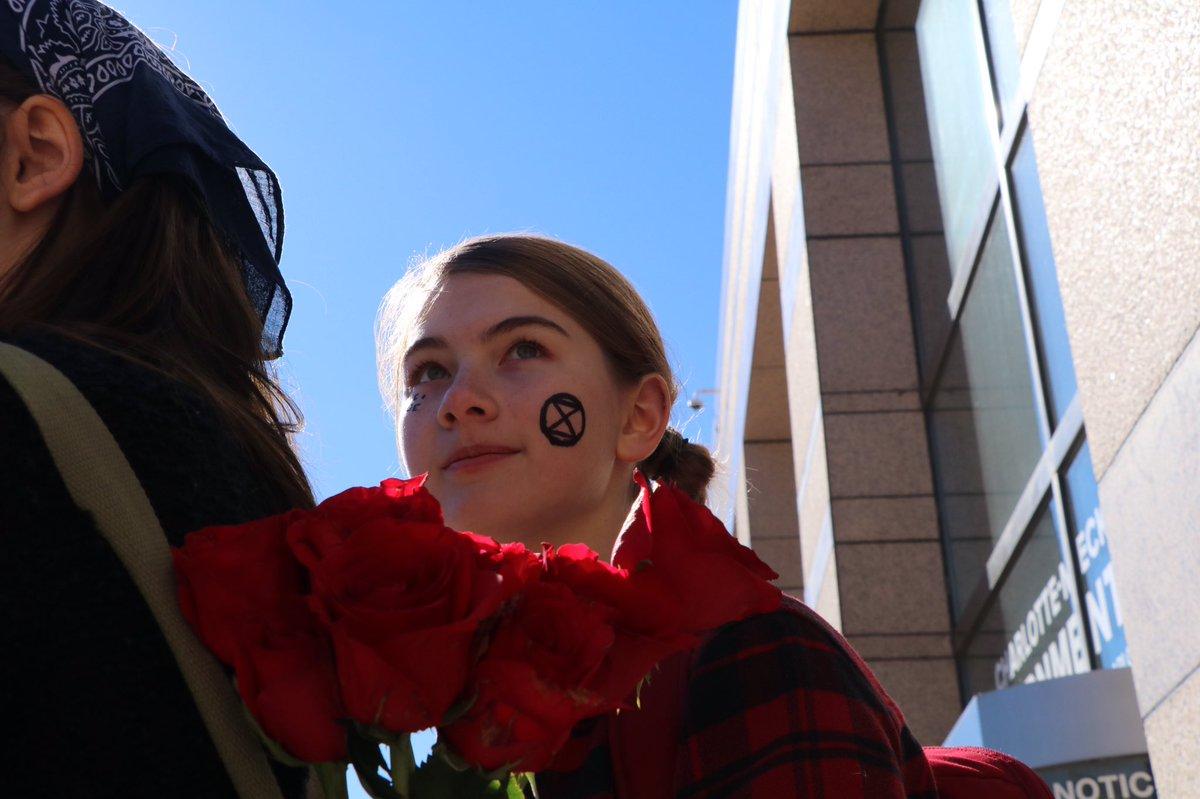 Week 45! 📍Charlotte, NC, USA love is revolutionary. #loveandrage