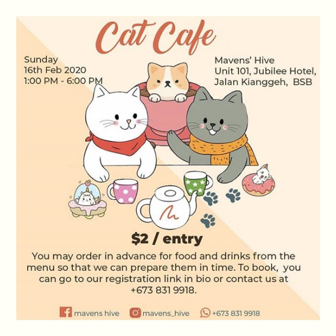 My Start Up business under Politeknik Brunei Entrepreneurship will be having a pop up at the cat cafe! Drop by and support pls  <br>http://pic.twitter.com/s45ygZf9gv