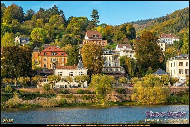 Blick über den Neckar auf die andere Seite - Heidelberg (Oktober 2019)  #Neckar #Heidelberg #heidelbergram #visitheidelberg #heidelberggermany #BadenWürttemberg #Deutschland #Germany #biancabuergerphotography #igersgermany #igersberlin #IG_Deutschland #ig_germany #shootcamp …pic.twitter.com/5r3xMqQevF