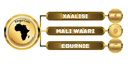 être là où il faut au moment qu'il faut, c'est maintenant avec les monnaies numériques du continent africain #KinguiCoin (#Xalisi  #MaliWaari  #Eburnie), et surtout avec @UVM_UPPKINGUI  et #Famib_Labs du @FamibGroupe du #Mali , L'avenir se prépare aujourd'hui et ensemble