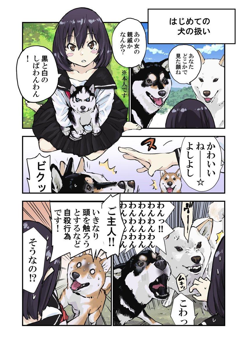 世界の終わりに柴犬と(前回の続き)初対面の犬の触り方の話