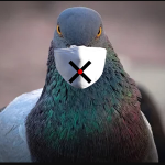 Image for the Tweet beginning: @pigeoncoin Corvid-19 pandemic has been