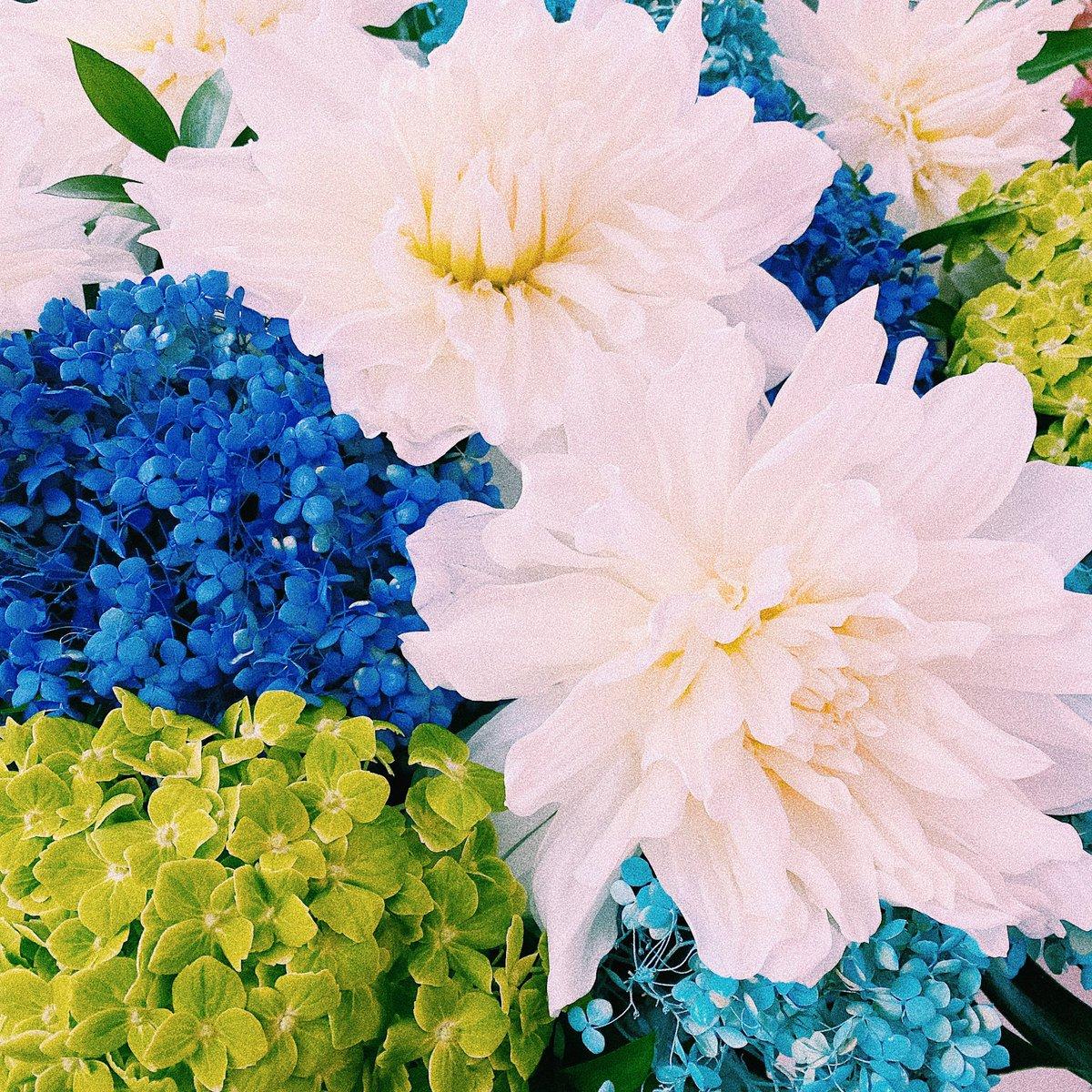 米津玄師 2020 TOUR / HYPEツアー6本目、横浜アリーナです。外は曇り空ですが、皆で会場に素敵な花を咲かせる事が出来ますよう。ご来場の皆様宜しくお願い致します。