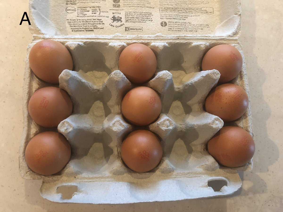 My egg box critics seem divided. So what should I have done? Vote on your favourite: A, B, C or D?