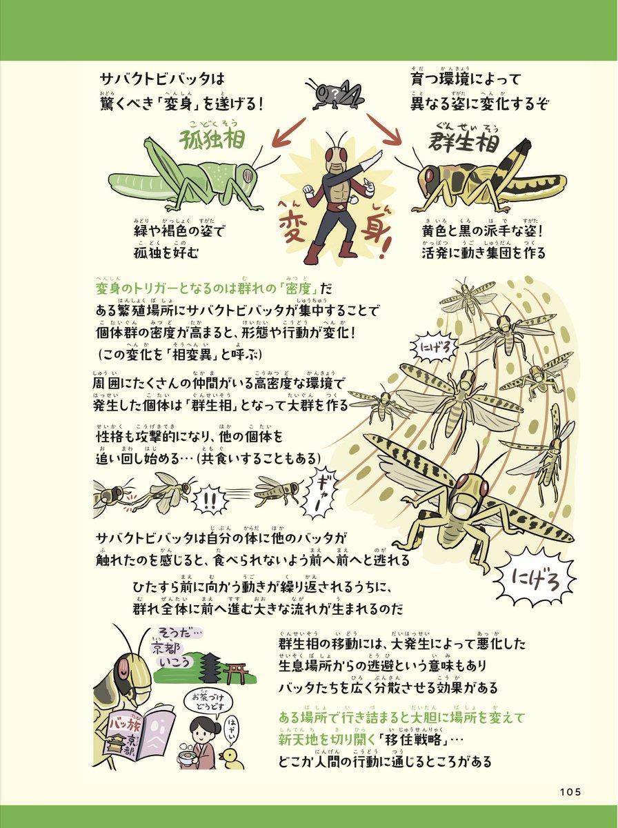 ぬまがさワタリ@『ふしぎな昆虫大研究』発売中さんの投稿画像