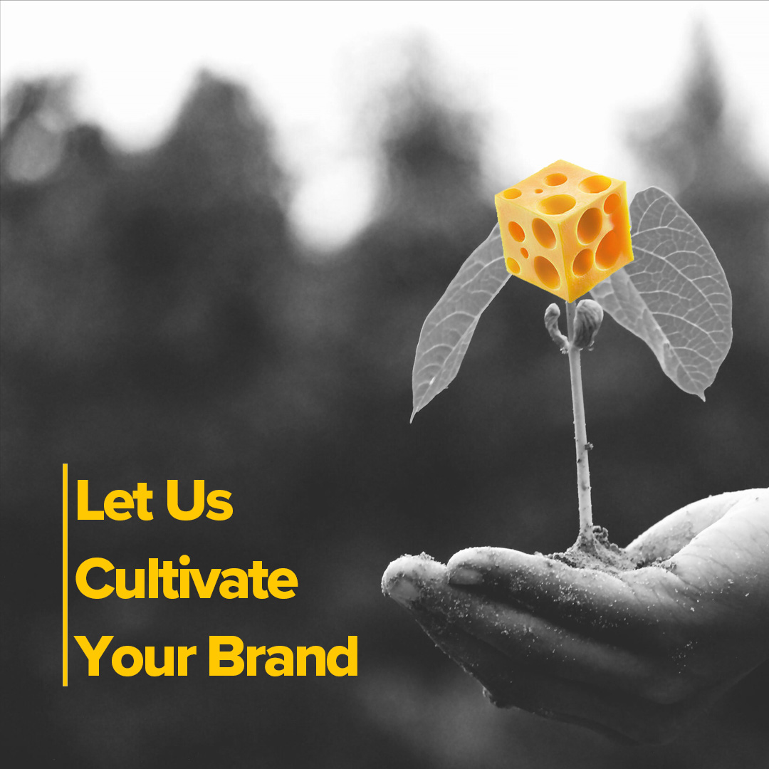 We plant the seeds, while you reap the harvest. #SayCheezePlz #brandidentity #content #creators #cultivate #design #logo #noworries #brand #launch #smallbusiness #connect #brandawareness #passion #harvest #yeararound #reap #sewyourseeds #plant #grow #positivevibes #reaptheharvestpic.twitter.com/uwbzJ6bdkG