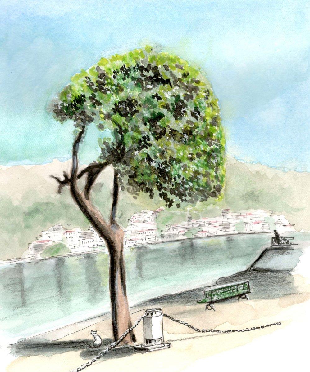 Tree on the lakeside, #Como, #Italy - #LakeComo -  #watercolor #warercolour #watercolorpencils #usk #urbansketcher #urbansketchers #drawingpic.twitter.com/iyyWkBAozJ