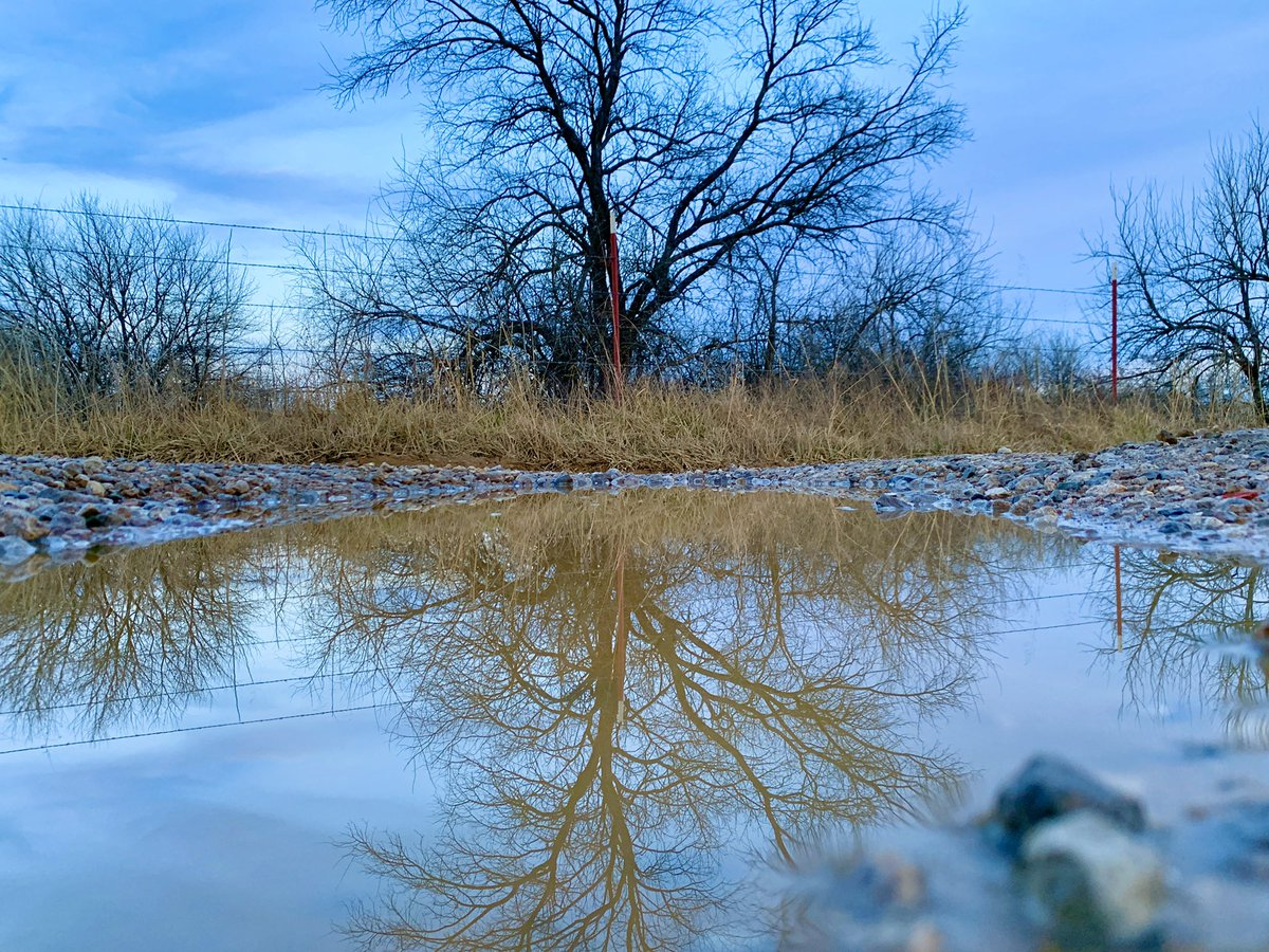 Reflection photography trends have always hurt my head... why must you all flip the image upside down? Makes no sense! Just keep it simple. And muddy puddles really offer up a great reflection! #reflection #mudpuddles #reflection #iphonexr #photography #smartphonephotography pic.twitter.com/1KOdmGjZKb