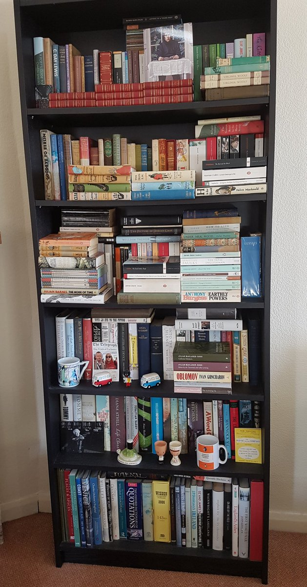 It has been a day to hole up with your #books and mutter ya boo sucks to #StormDennis. #Sunday #bookshelves #reading. pic.twitter.com/TGG1D0mqDW