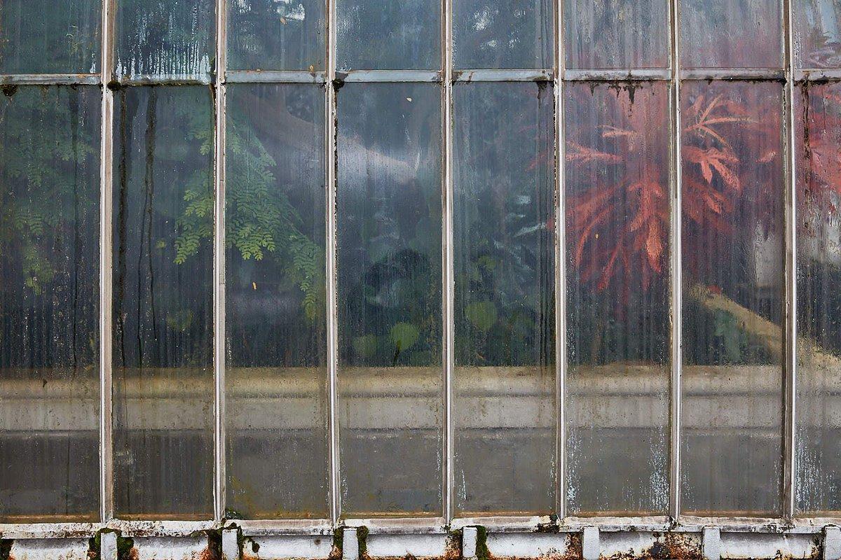 Kew Gardens, London #fineart #fineartphotography #fineartphotographer #artist #contemporaryart #fineartgallery #fineartprints #landscapephotography #landscape #wallart #fadingflowers #kewgardens. Check https://buff.ly/3bAZGlg.pic.twitter.com/IfyWnnAUJz