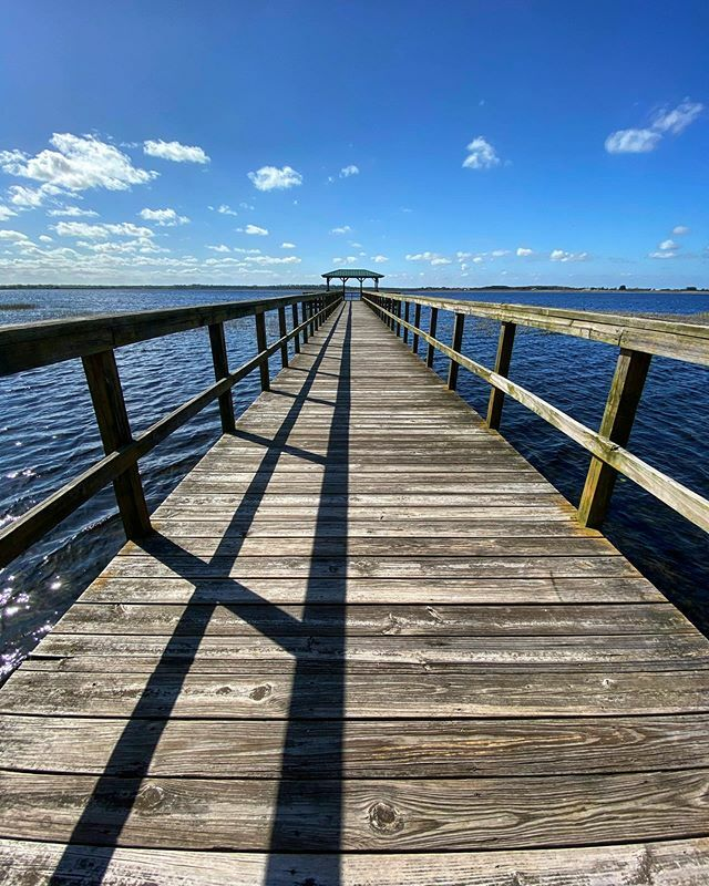 Fishing dock views at Twin Oaks. #twinoaksconservationarea #dock #naturephotography #nature #floridanature #outdoorphotography #landscapephotography https://ift.tt/39F4kglpic.twitter.com/t51IqdZglc