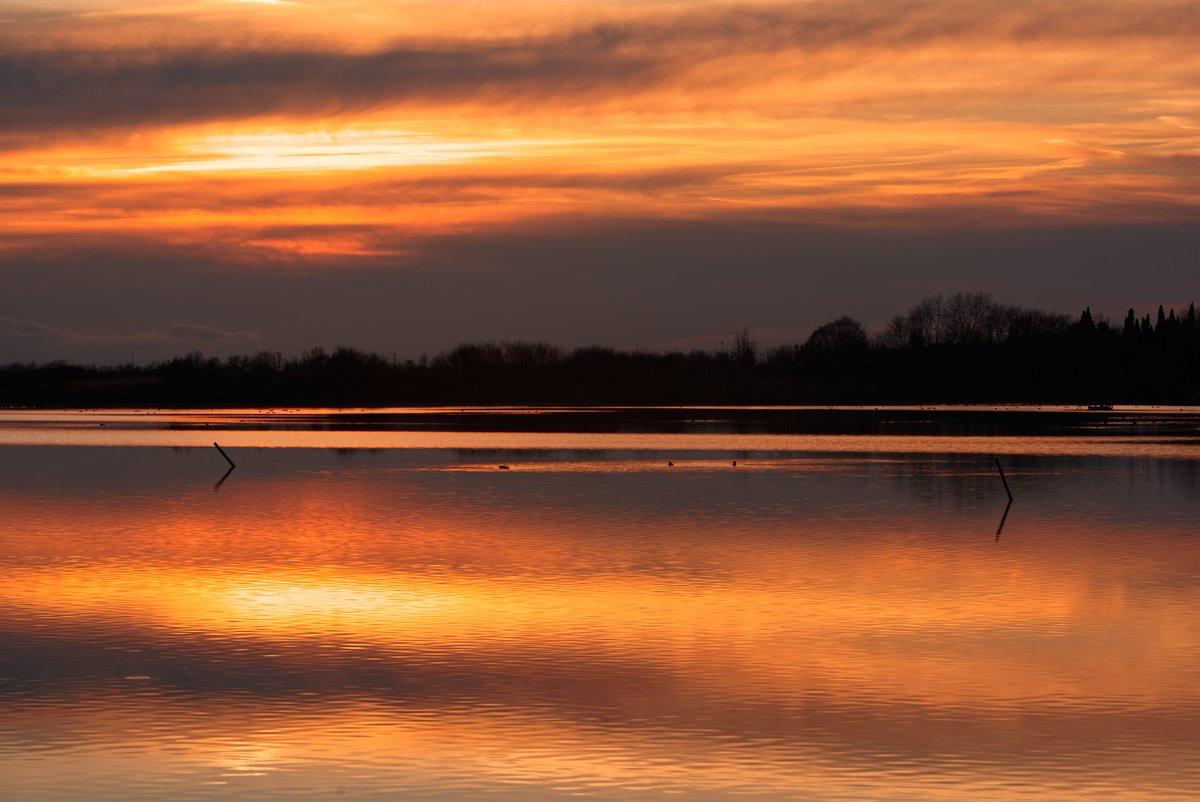Riserva Val Cavanata, tramonto #landscape #landscapephotography #FVGlivepic.twitter.com/650CakLze7