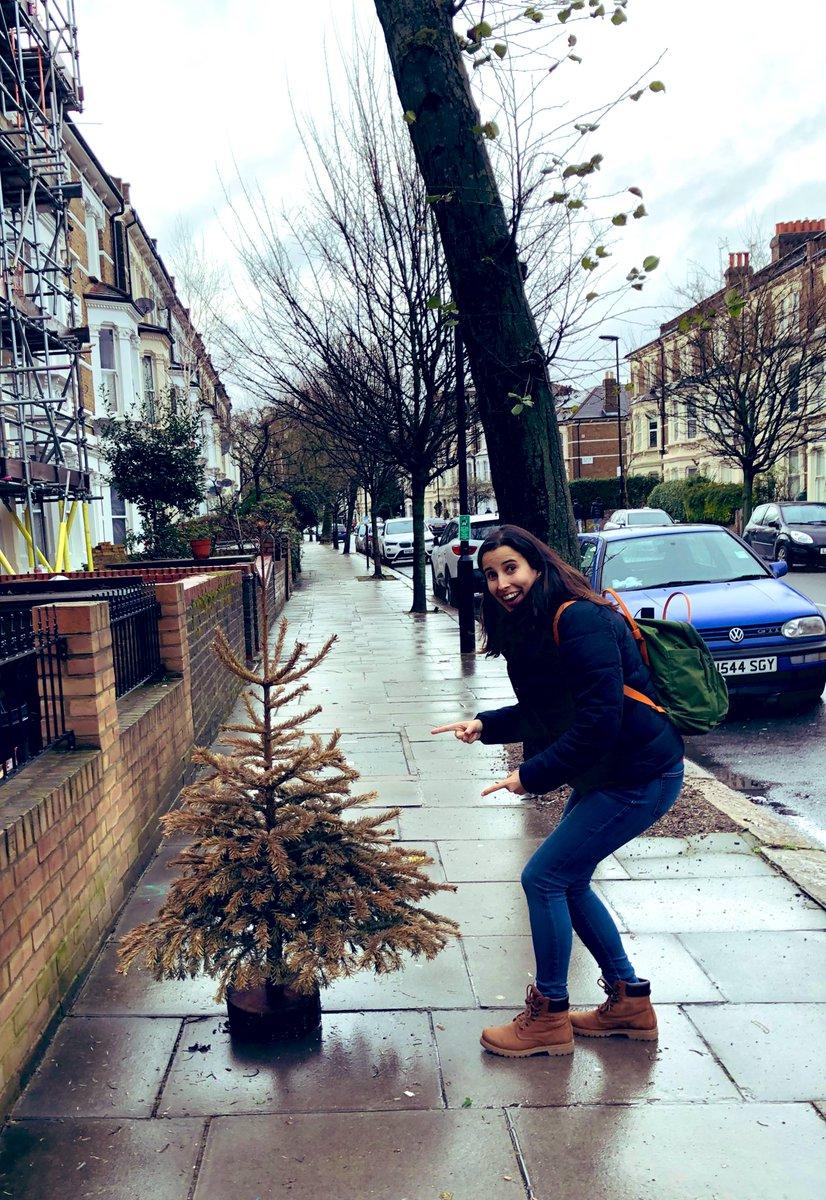 Alguien que aún tenía el árbol de navidad puesto y perdió la encuesta en instagram de si dejarlo puesto o no.  Yo he ganado la mia y se queda hasta la próxima navidad, total, solo quedan 10 meses #christmastree #arboldenavidad #london #londres #auntengoelmiopic.twitter.com/CTn3dhXu9u