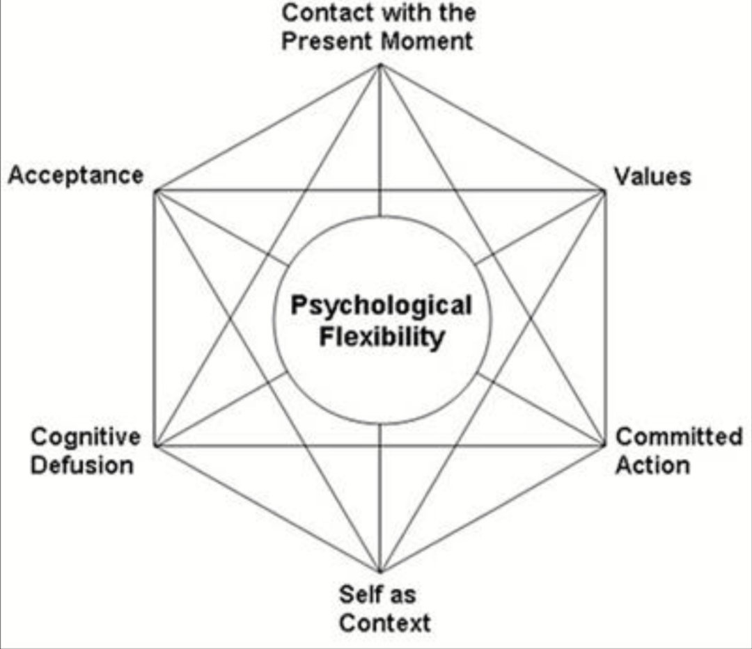 The ACT hexaflex neatly links the factors required for psychological flexibility. There is a a reason I keep coming back to this both personally and professionally - because it has compassion and action woven through the heart of it #acceptanceandcommitmenttherapy