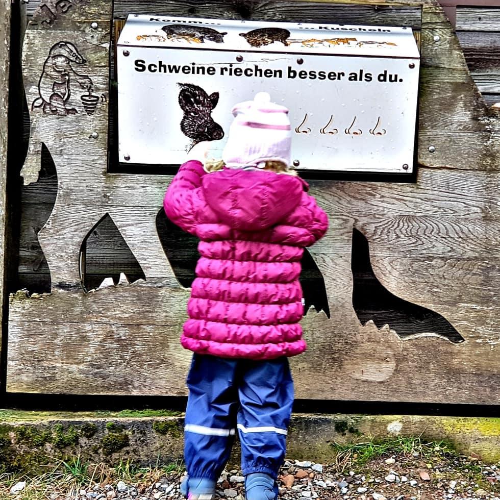 Einen schönen Tag im Wildpark Neuhaus verbracht.  #wildparkneuhaus #wildpark #familienblogger_de #familyblogger_de #familyqualitytime #familyquality #eltern #lebenmitkleinkind pic.twitter.com/WWO7iKfdYf – at Wildpark Neuhaus