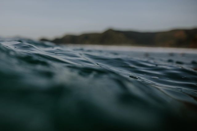 Moments in between sets. . . #surfphotographer #purenewzealand #surfing #surfphotography #surf #thesevennz #surftown #surflife #surfeveryday #instasurf #surfingparadise #surfingislife #surf_shots #canon #5dmarkiv…  https://www.instagram.com/p/B8o-HmGgwFP/ via https://tweet.photopic.twitter.com/hqSBPGIrZA
