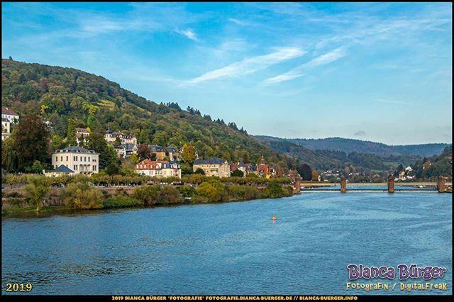 Blick flussaufwärts auf den Neckar - Heidelberg (Oktober 2019)  #Neckar #Heidelberg #heidelbergram #visitheidelberg #heidelberggermany #BadenWürttemberg #Deutschland #Germany #biancabuergerphotography #igersgermany #igersberlin #IG_Deutschland #ig_germany #shootcamp #canonde…pic.twitter.com/0We8it3ha6